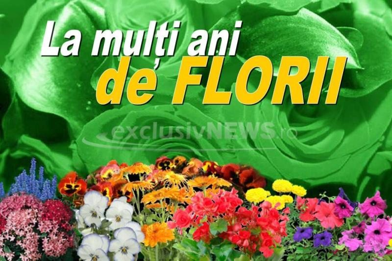 FLORII.jpg